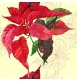 Seamless pattern with red poinsettia plant-03 vector image vector image