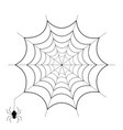 spiderweb and spider isolated on white background vector image vector image