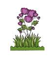 beautiful ornamental flowers vector image
