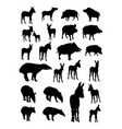 boar donkey tapir silhouette vector image vector image