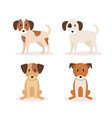 group of dogs icons vector image