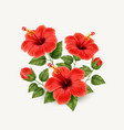 realistic beautiful hibiscus flower vector image