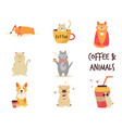 set cats and dogs enjoying coffee vector image