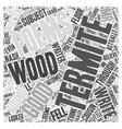 Termite Poems Word Cloud Concept vector image vector image