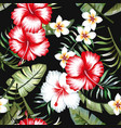 tropical flowers foliage black background seamless vector image vector image
