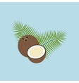Coconut Fruit Icon vector image vector image