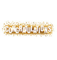 congratulations text with confetti white vector image vector image