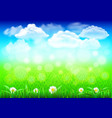 field with green grass 3d realistic background vector image vector image