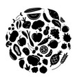 graphic fruit and vegetable together vector image vector image