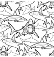 Graphic sharks pattern vector image