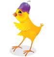 baby bird vector image vector image