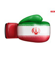 boxing gloves with iran flag vector image vector image