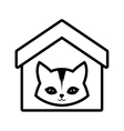 cat feline curious small house pet outline vector image vector image