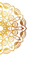 clean white cover with gold beautiful flower vector image vector image