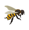 flat icon of bee flying insect with vector image
