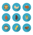 flat icons nuts vector image vector image