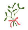 mistletoe branches vector image vector image
