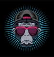 monkey head eyeglasses vector image vector image