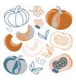 pumpkin autumn vegetable hand drawn vector image