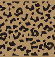 seamless background with leopard spotty ornament vector image vector image