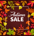 autumn sale poster fallen leaves offer vector image