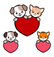 cartoon dog cat icon vector image