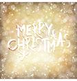 Christmas Lights with Merry Christmas Greetings vector image vector image