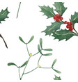 holly and mistletoe watercolor seamless pattern vector image vector image