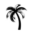 palm tree icon brush stroke design vector image