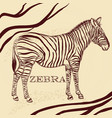 savanna background with zebra in sepia vector image
