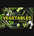 vegetables background green veggie vector image