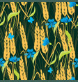 background of cornflowers and ripe wheat vector image