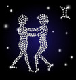 brilliant sign of the zodiac gemini is the starry vector image vector image