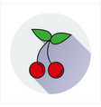 cherry simple icon on white background vector image vector image