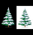 holiday christmas tree vector image