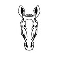 horse head stylization vector image