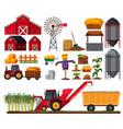 set of sugar cane farm element vector image