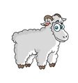 Cartoon farm sheep character vector image