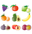 different types of fresh fruits vector image vector image