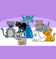 funny cats pets group cartoon vector image