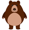 grizzly bear smiling on white background vector image vector image