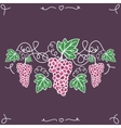 Hand-drawn decorative ripe grapes on the vine vector image vector image