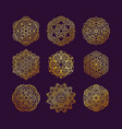 mandala collection set vintage decorative vector image