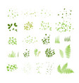 set silhouettes summer grass leaves vector image vector image