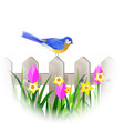 spring blue bird vector image