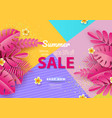 summer sale background for banners pink palm vector image vector image