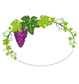 grapes frame with leaves vector image