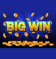 big win and falling from the top golden coins vector image vector image