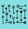 cartoon antique keys vector image