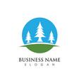 cedar tree logo template vector image vector image